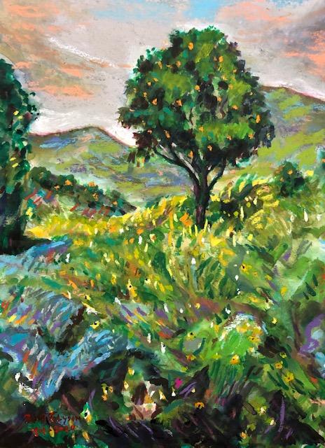 ORANGE TREE SAN JUAN CAPISTRANO CA.     WATERCOLOR / PASTELS 9″ X 12″  4-1-2020