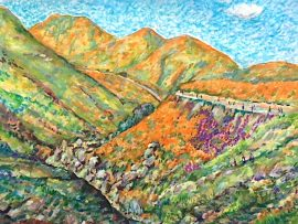 WALKER CANYON POPPIES   WALKER CANYON CA.    WATERCOLOR  16″ X 18″  3-17-19