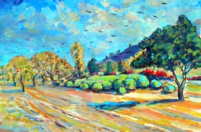 Crows in flight San Juan Capistrano, Ca  water color 11″ x 15″