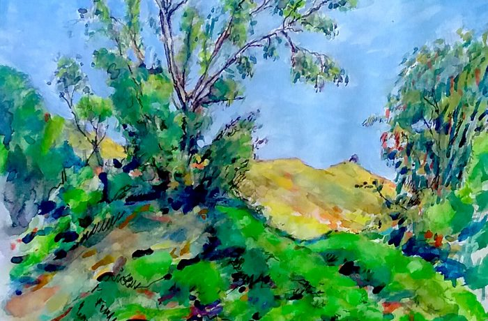 TREE HAWKS  San Juan Capistrano  watercolor 12″ x 9″ 5-1-17