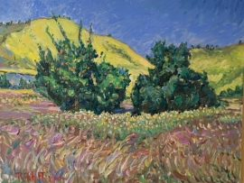 ORANGE AND OAK  SAN JUAN CAPISTRANO CA.  oil  16″ x 20″  4-17-10