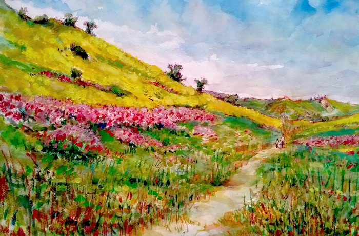 SWEET PEAS & MUSTARD FIELDS  San Juan Capistrano  watercolor  24'x16″ 7-18-17