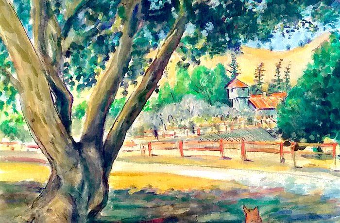 Molly Dog at the Winery  Hamilton Oaks Winery, San Juan Capistrano Ca. 12″ x 12″ 7-17-16